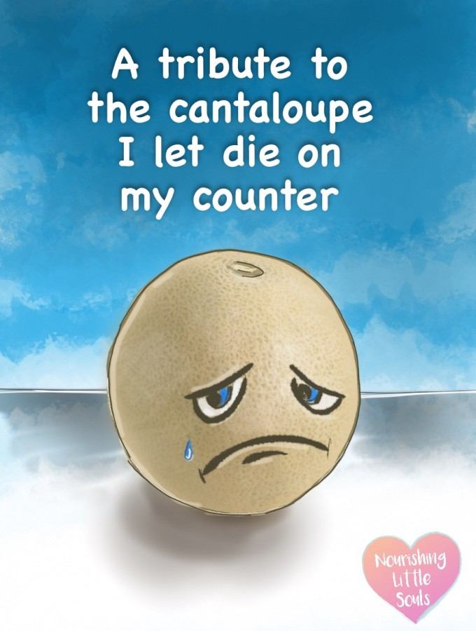 A tribute to the cantaloupe I bought and let die on my counter