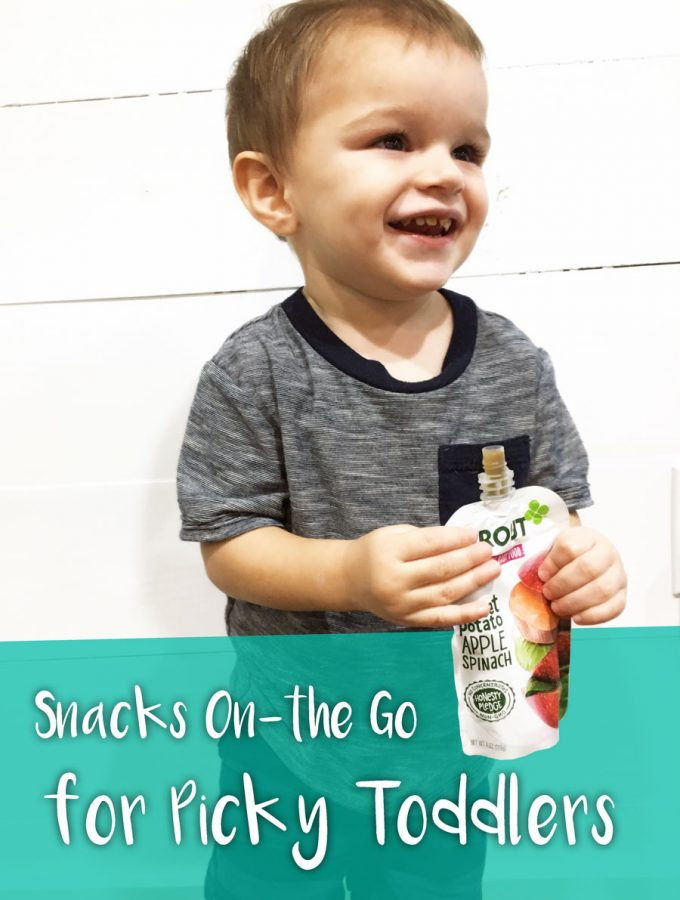 Snacks On-the Go for Picky Toddlers