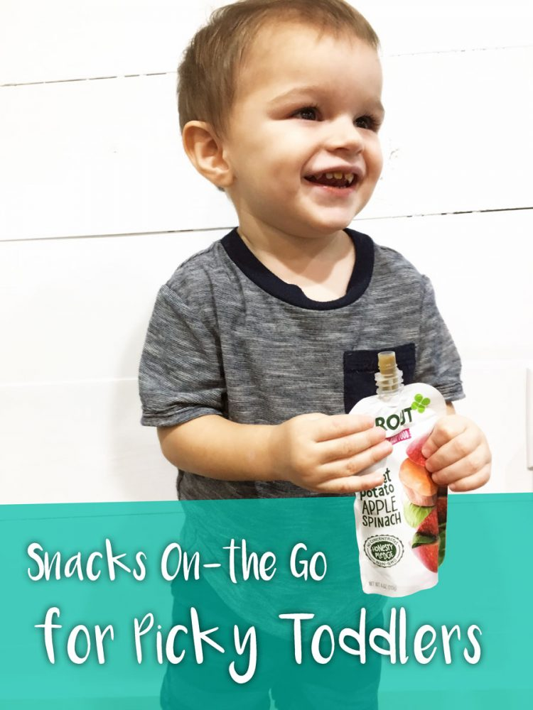 Healthy snacks on the go for picky toddlers!
